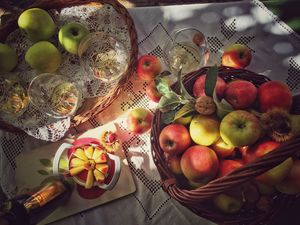 Apfel Stilleben Haus des Apfels 5060 c steiermark tourismus candic Steiermark Tourismus Amra Candic web