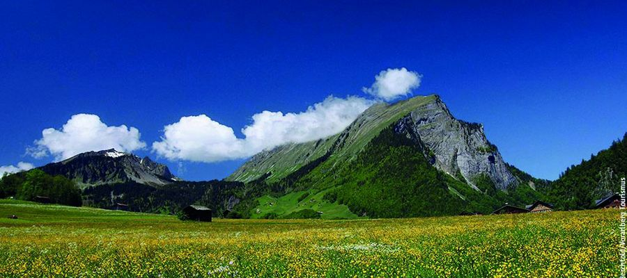 Bregenzerwald ist die Bezeichnung für eine Region im österreichischen Bundesland Vorarlberg. Diese umfasst im Wesentlichen das Einzugsgebiet der Bregenzer Ach südöstlich von Bregenz, in der Nähe des Bodensees, bis an den Hochtannbergpass.
