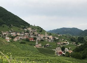 Prosecco Weinstr IMG 7873