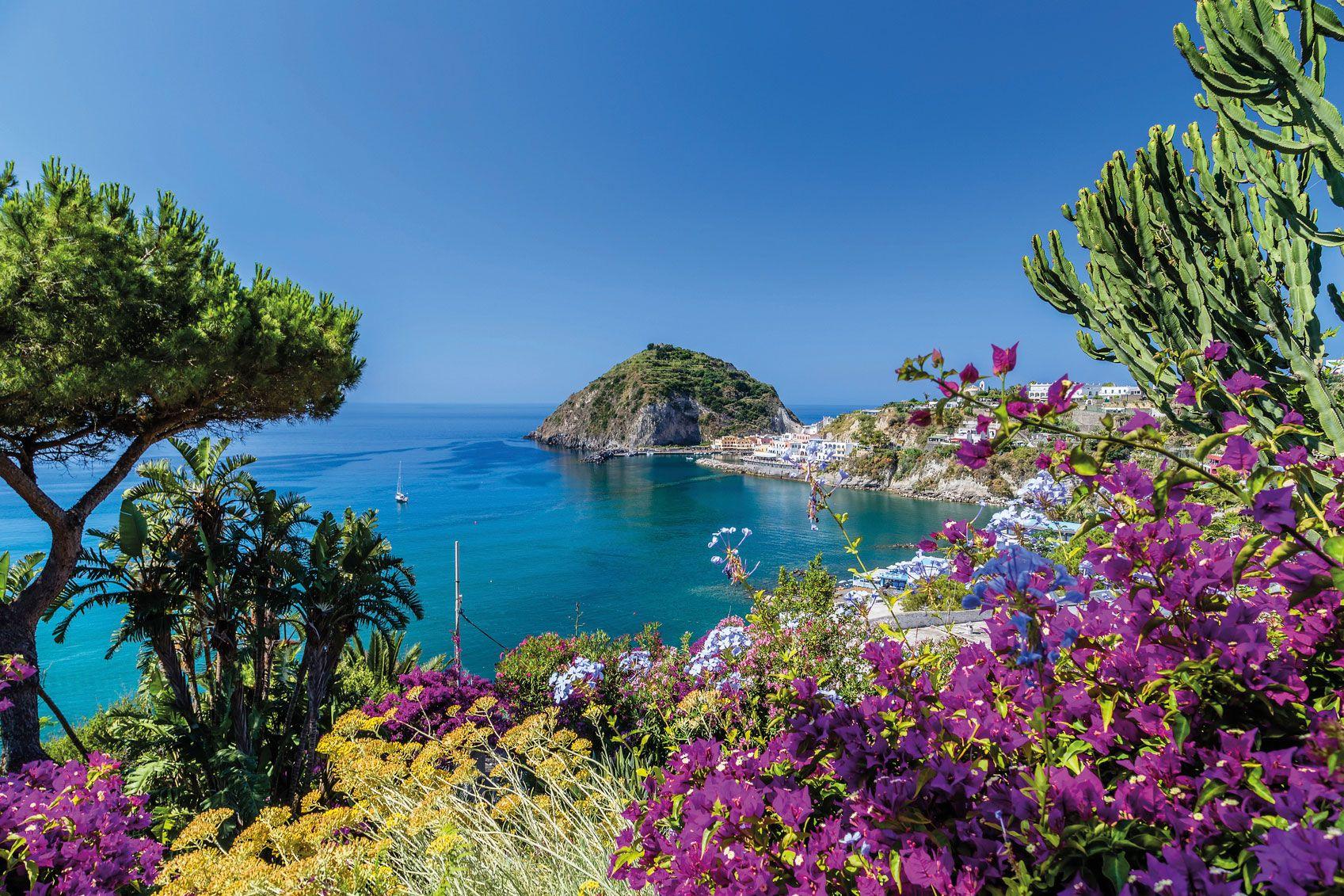 Ischia1 web